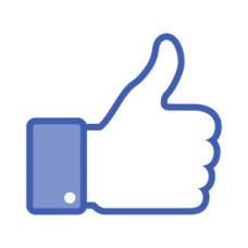 100 Facebook likes - vind ik leuks (internationaal)