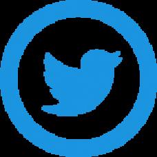 100 Twitter backlinks