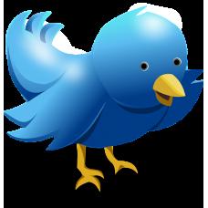 1000 Twitter volgers (internationaal)