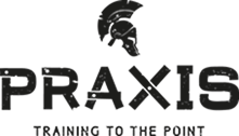 Praxis Training to the point